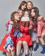 Gidle 1st Look 8