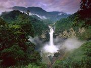 Amazon River (16)