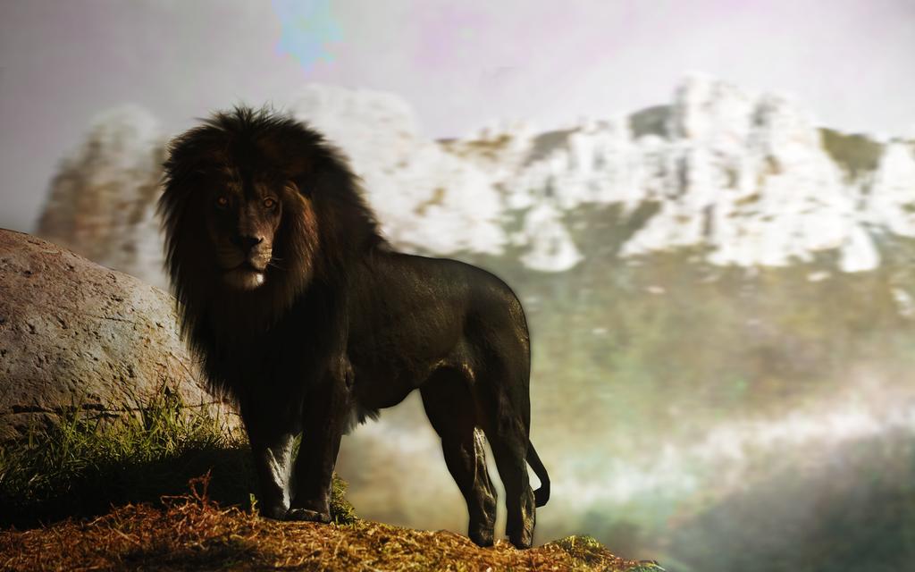 Der Schwarze Löwe