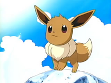 May's Eevee