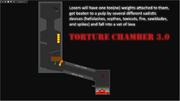 TortureChamber30