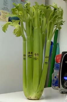 Celery 2011