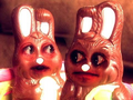 Bad day bunnies.png