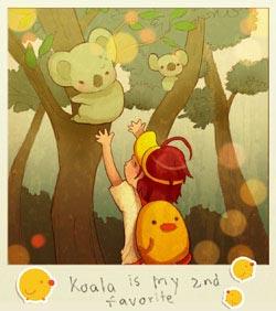 3 koala
