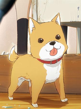 Archivo:Taromaru-anime.jpg