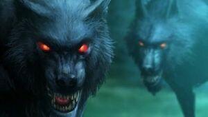 Mist Wolves
