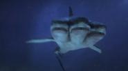 Mutant Shark (3-Headed Shark Attack)