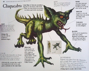 Chupacabra (Unknown Book)