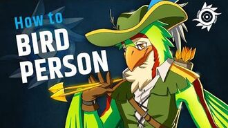 How to BIRD PERSON!