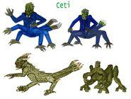 Ceti -Body type- A