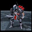 Hawk Lvl5