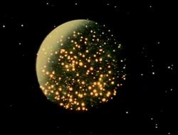 Mariko's Firefly