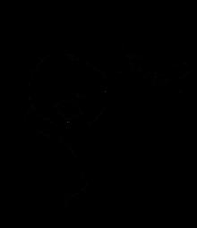 Svr333