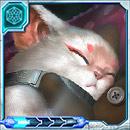 Kitty the Grand Dreamer thumb