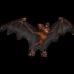 BatsMedPS4Remake