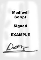MediEvilScriptExample