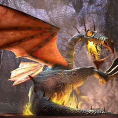Dragon burns... balls.