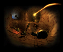 The Ant Caves