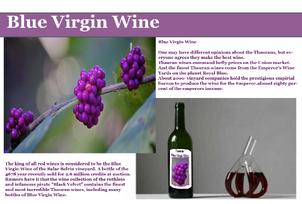 Blue virgin wine