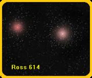 Resultado de imagem para Ross 614 star