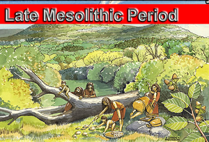 Late Mesolithic Period