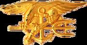 250px-US Navy SEALs insignia