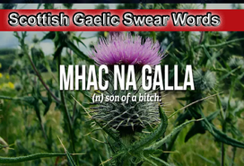 Scottish Gaelic Swear Words