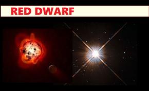 Red dwardd