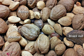 Common-nuts