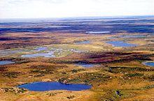 Tundra in Siberia