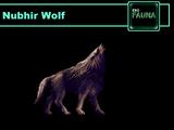 Nubhir Wolf