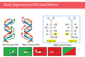 Dietary Reguirements of DNA based lifeforms
