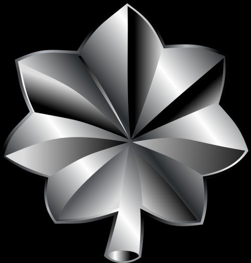 Lieutenant Colonel Galnet Wiki Fandom Powered By Wikia