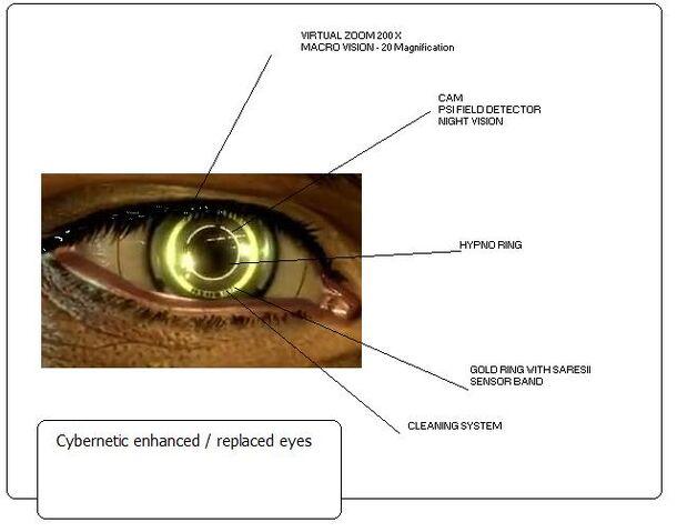 File:Golden eye2.jpg