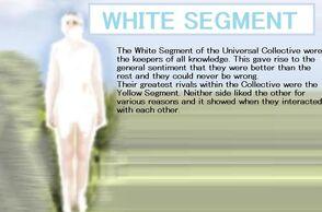 White dsegment