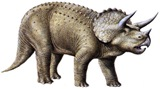 Triceratops-thumb