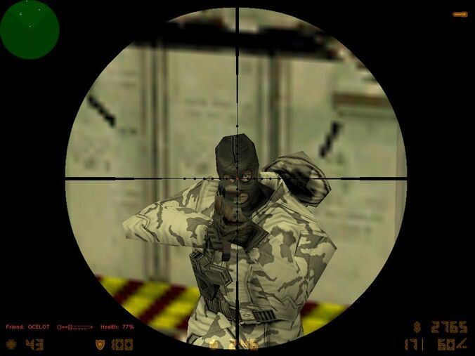 Counter strike head shot