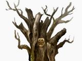 Trône de Chêne