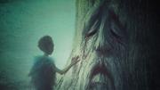 Enfant devant un Barral (Histoires & Traditions)