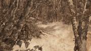 Les Enfants à Westeros (Histoires & Traditions)