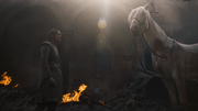 Arya et le cheval