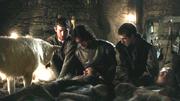 Grenn, Jon et Pypar menacent Rast