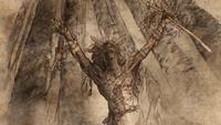 Enfant de la Forêt