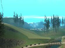 Wald san andreas