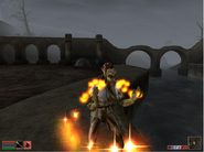 TheElderScrollsIIIMorrowind-Screen01