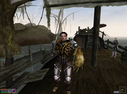 TheElderScrollsIIIMorrowind-Screen03