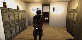 Aaronlab locker