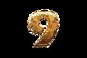 9-icon