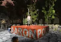 Aaronpole