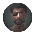 Fallout nv icon.png